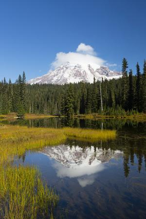 Wa, Mount Rainier National Park, Mount Rainier Reflected in Reflection Lake
