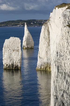 White Cliff and Harry Rock, Studland, Isle of Purbeck, Dorset, England