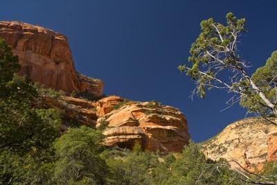 Fay Canyon, Red Rock, Coconino National Forest, Sedona, Arizona, USA