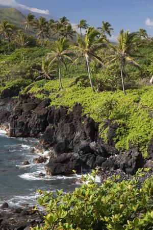 Hawaii, Maui, Hana, the Black Sand Beach of Waianapanapa