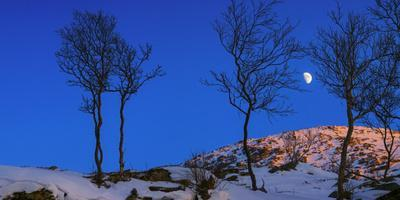 The First Quarter Moon Is Photographed over a Winter Landscape of Northern Norway at Sunset