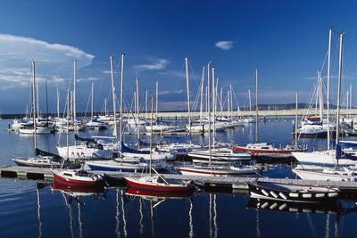 Sailboats Moored in Harbor Marina