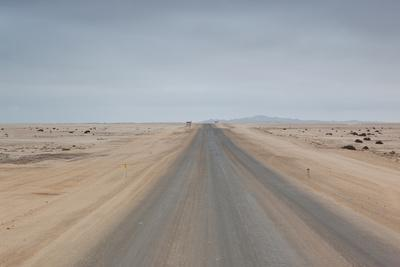 The Road to Cape Cross, Namibia