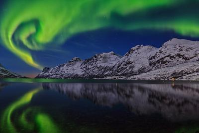 View of the Aurora Borealis, Northern Lights, Reflected in a Fjord