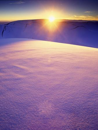 A Rarely Seen View of Snow-Covered Sand Dunes, at Sunset