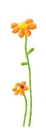 Two Orange Flowers and Ladybug