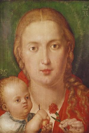 Madonna of the Carnation, 1516