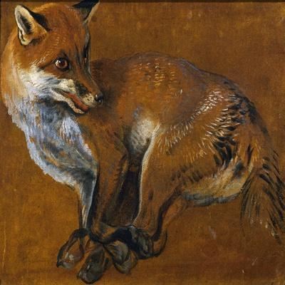 Fox with Legs Tied, by Alexandre-Francois Desportes (1661-1743), France, 18th Century
