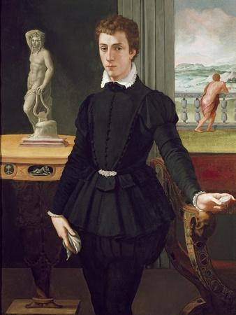 Portrait of a Young Man, Post 1560