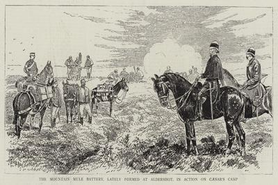The Mountain Mule Battery, Lately Formed at Aldershot, in Action on Caesar's Camp