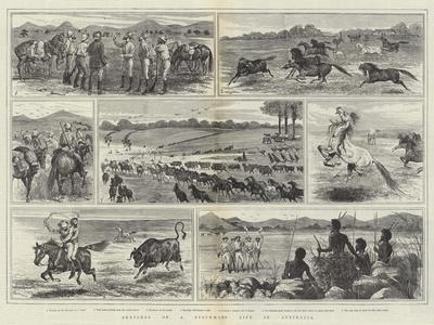 Sketches of a Stockman's Life in Australia