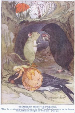 Thumbelina Tends the Poor Bird