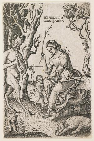 Satyrs Family, C. 1520