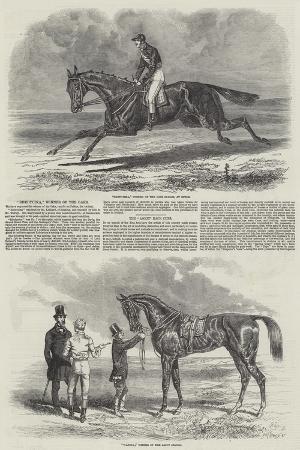 Winning Racehorses