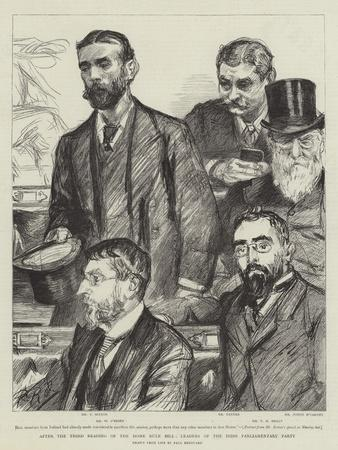 After the Third Reading of the Home Rule Bill, Leaders of the Irish Parliamentary Party