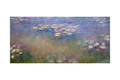 Water Lilies, C.1915-26