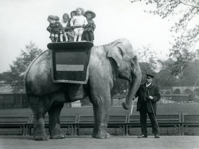 An Indian Elephant, with Keeper, Taking Small Children for a Ride at London Zoo, C.1913