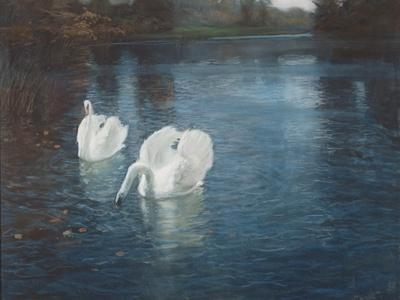 Swans on the River, C.1880