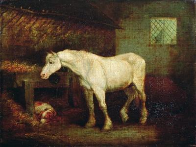 An Old Grey Mare at a Manger