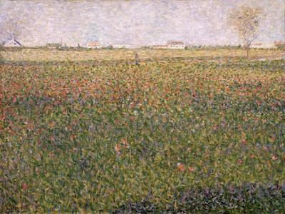 Alfalfa, St. Denis, 1885