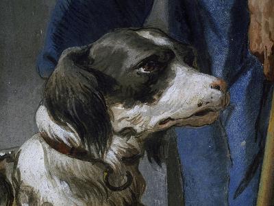 Dog Argo