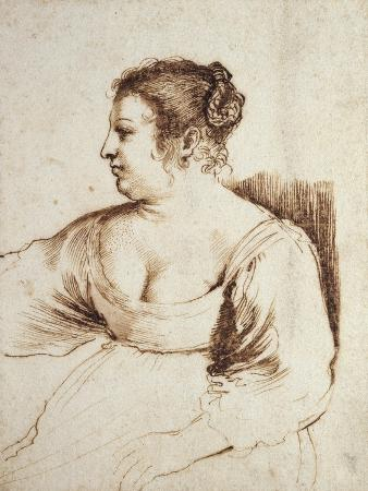 A Woman Seated, 1640 - 1649 (Pen and Brown Ink with Brown Wash on White Paper)