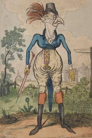 A Dandy Cock in Stays, 1818