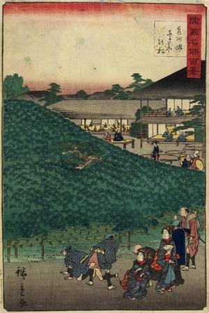 The Pine Tree of Naniwaya in Sakai of Senshu Province, September 1859