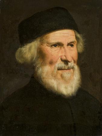 Portrait of a Venetian, C.1550