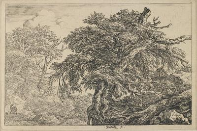 The Great Beech with Two Men and a Dog, C. 1650-1655