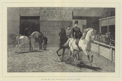 The Horse Show at the Agricultural Hall, the Arabs in the Ring