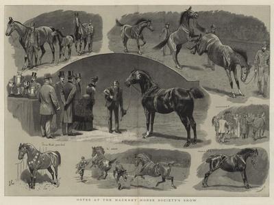Notes at the Hackney Horse Society's Show
