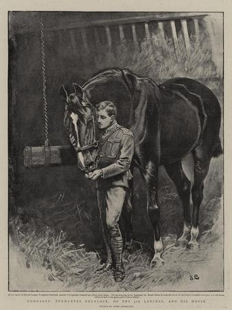 Comrades, Trumpeter Shurlock, of the 5th Lancers, and His Horse