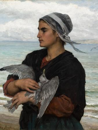 The Wounded Sea Gull, 1878