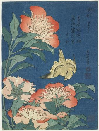 Peonies and Canary, C. 1833