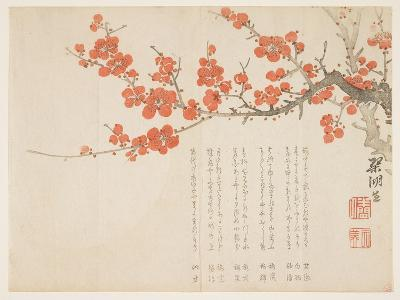 Full Moon and Plum Blossoms, C.1860