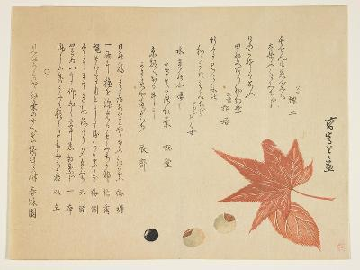 Autumn Leaves and Nuts, 1849-76