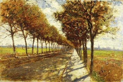Tree-Lined Avenue in Bremen, 1912