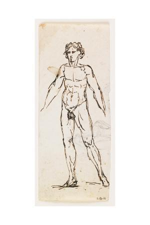 Standing Nude Male