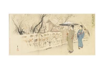Garyo-Bai Plum in Kameido, December 1895