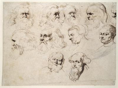 Seven Studies of the Head of an Elderly Bearded Man