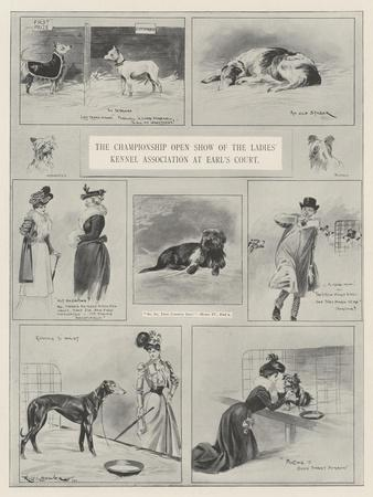 The Championship Open Show of the Ladies' Kennel Association at Earl's Court