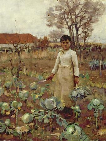 A Hind's Daughter, 1883