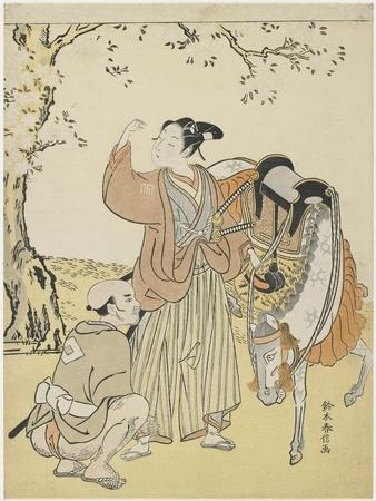 Young Samurai Viewing Cherry Blossoms as a Mitate of Prince Kaoru, C. 1767