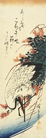 Crane and Bush Clover, 1830-1858