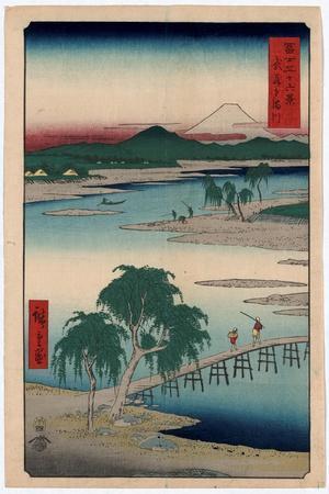 Musashi Tamagawa