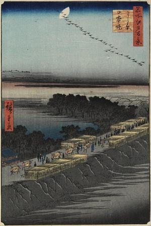 Nihon Embankment, Yoshiwara, April 1857