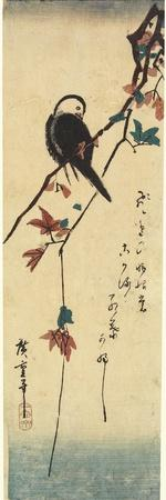 Bird on Maple Branch, 1830-1858