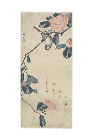 (Bird on Camellia), Early 19th Century