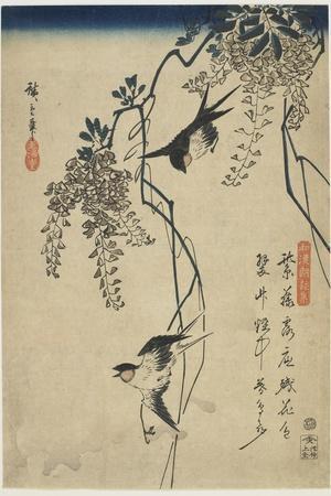 Swallows Flying Through Wisteria Vines, 1837-1844